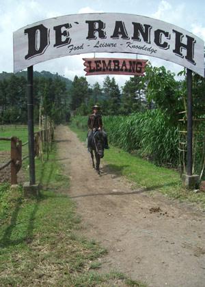 Riding black horse