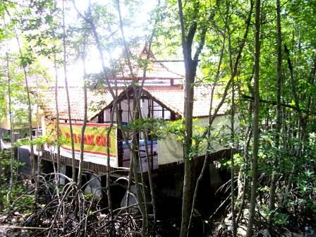 Madurasa is located deeper in the forest, but its easy to find