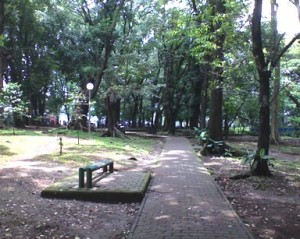 Bandung Has Lansia Park Too